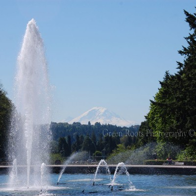 Mt. Rainier and UW Fountain